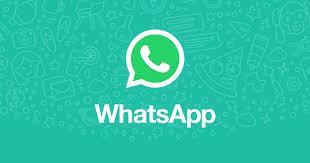 whatsapp contatto diretto